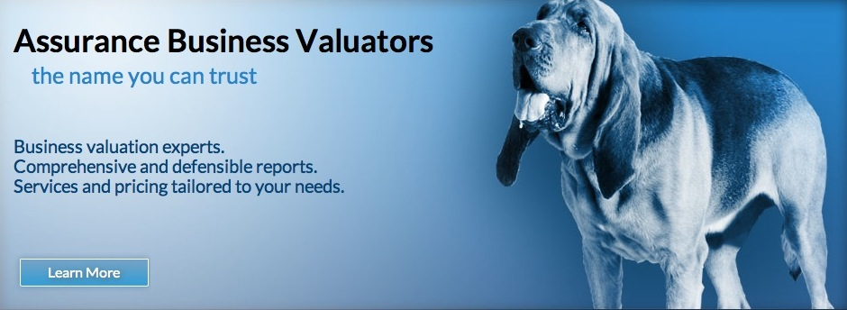 Assurance Business Valuators